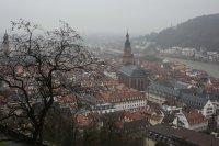 miasto we mgle